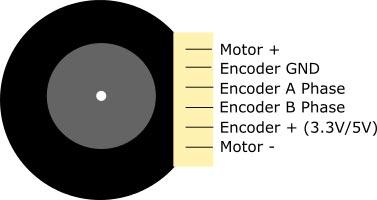 12v 350rpm enkoderli dc motor