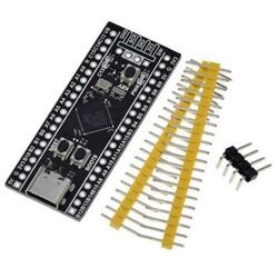 STM32F401CCU6 Geliştirme Kartı - Thumbnail