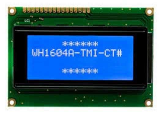 4x16 Grafik Lcd Ekran Mavi - WH1604A-TMI-CT
